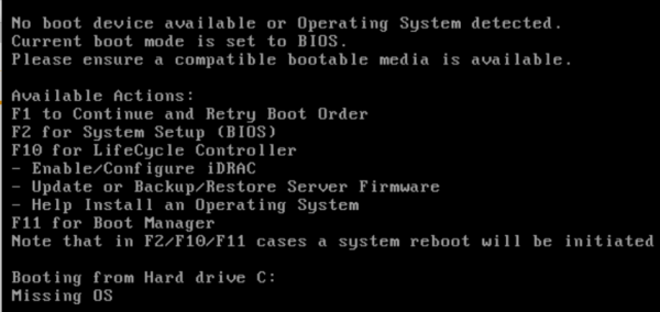 Can't Install OS from Bootable USB Drive on Dell Poweredge